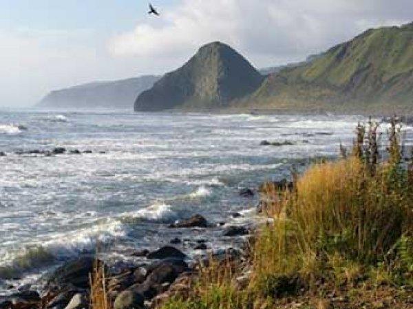 СМИ: Япония готова признать право России на курильские острова
