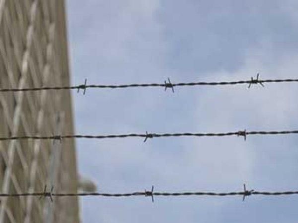 В Новокузнецке осудили двух мужчин, которые пригласили девушку в гости, убили и ей же закусили (ФОТО, ВИДЕО)