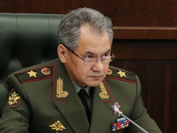 Шойгу рассказал о применении новейших секретных ракет Х-101 в Сирии