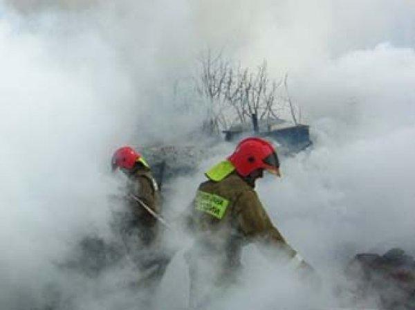 В Липецкой области на пожарище нашли труп 4-летней девочки с перерезанным горлом