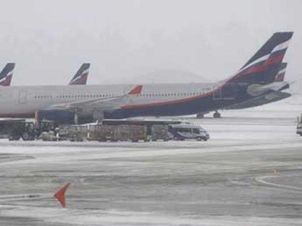 В аэропортах Москвы из-за снегопада отменены 20 рейсов