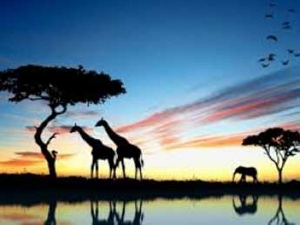 В Африке нашли следы первой жизни на Земле