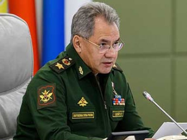 Шойгу: поход российских кораблей вызвал ажиотаж на Западе