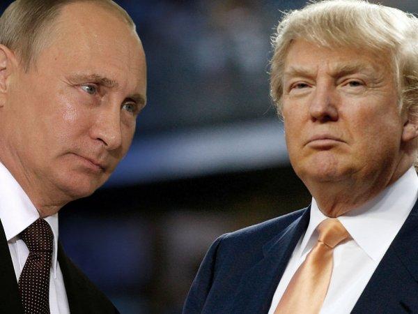WT: после инаугурации Трамп ударит по боевикам в Сирии вместе с РФ