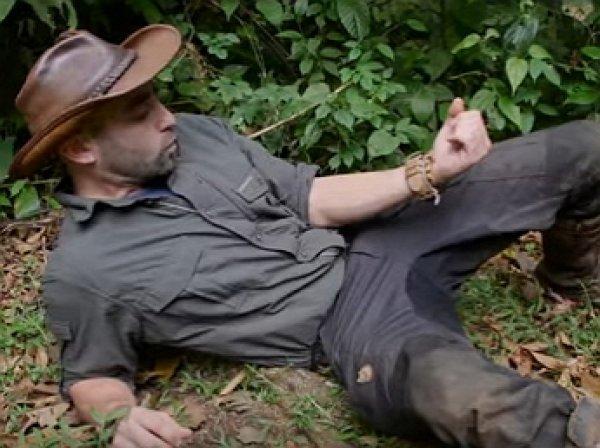 YouTube ВИДЕО: шокирующие последствия самого болезненного укуса насекомого в мире