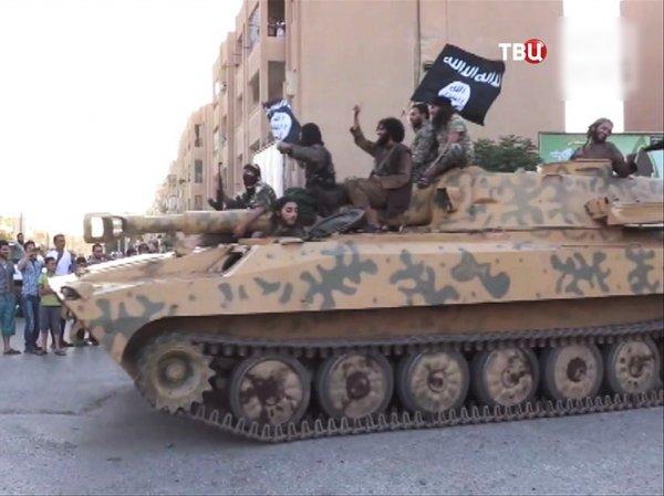 Сирия, последние новости: экс-глава Генштаба России объяснил, почему террористы ИГ захватили Пальмиру