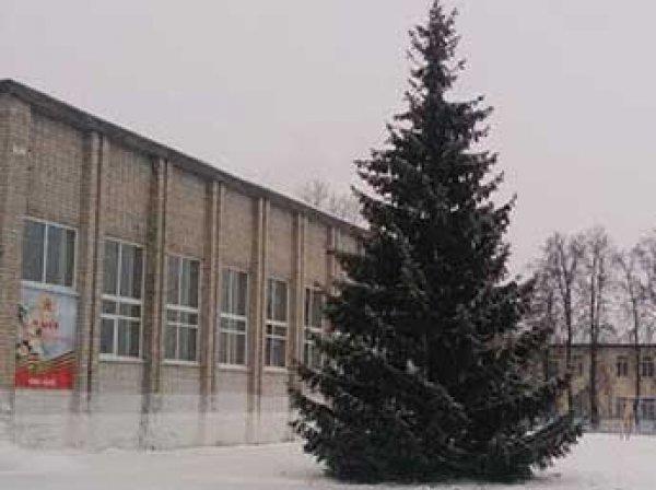Прокурор потребовал для студентки Карауловой 5 лет тюрьмы