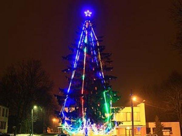 В Литве мэр попытался снять советскую звезду с новогодней елки, но жители ему не дали