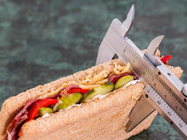 Ученые рассказали, как образование может вызывать ожирение