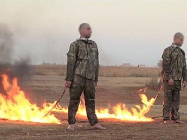 СМИ: боевики ИГИЛ в Сирии заживо сожгли и закопали турецких военных