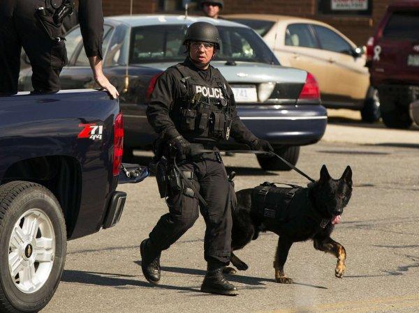 В Бостоне во время обыска под матрасом нашли  млн наличных (ФОТО)