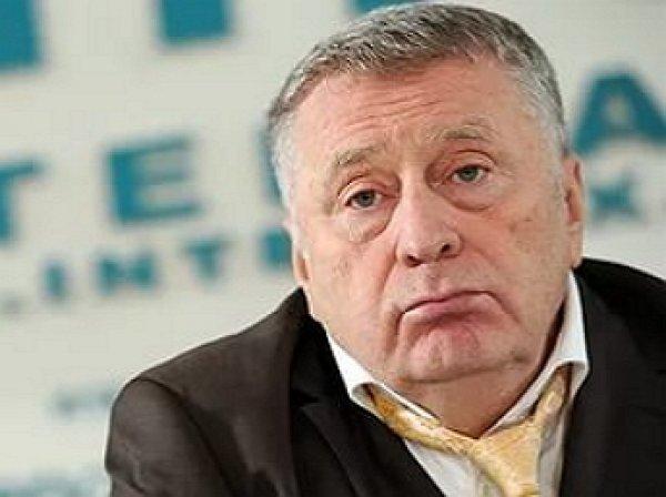 Жириновский: Мизулиной нужно пенсию назначить по инвалидности