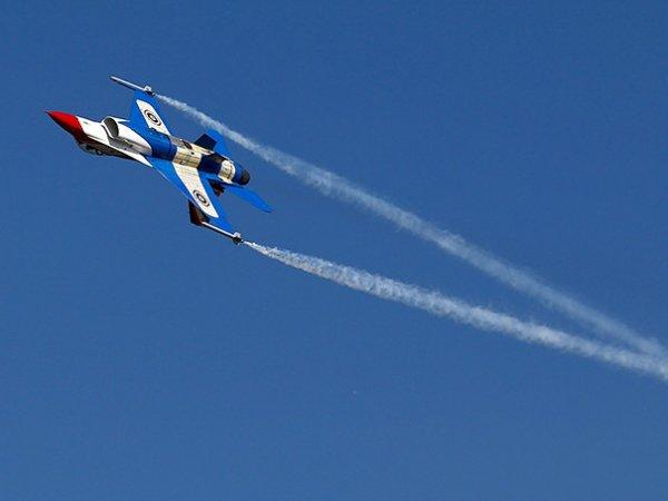 Самолет ВВС США засняли в тренировочном бою с российским Су-27 (ФОТО)