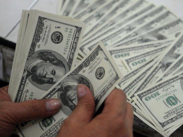 Курс доллара на сегодня, 26 января 2017: эксперты назвали коридор колебания курса доллара