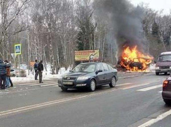 Авария на Варшавском шоссе в Новой Москве 1 февраля: погибли 9 человек (ВИДЕО)