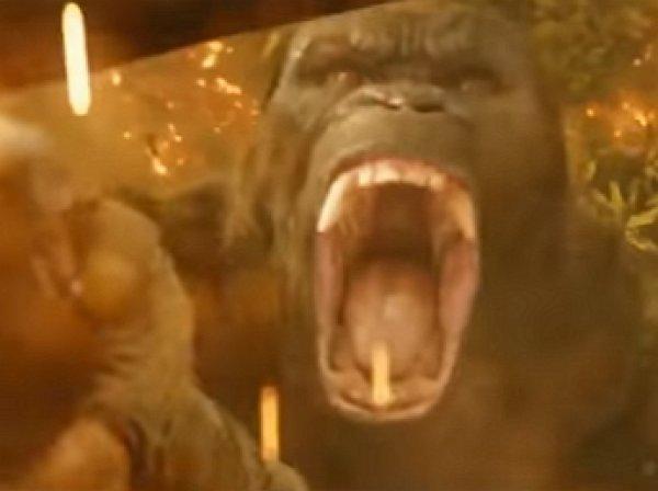 "На YouTube опубликовано грандиозное ВИДЕО из нового ""Кинг Конга"" (ВИДЕО)"