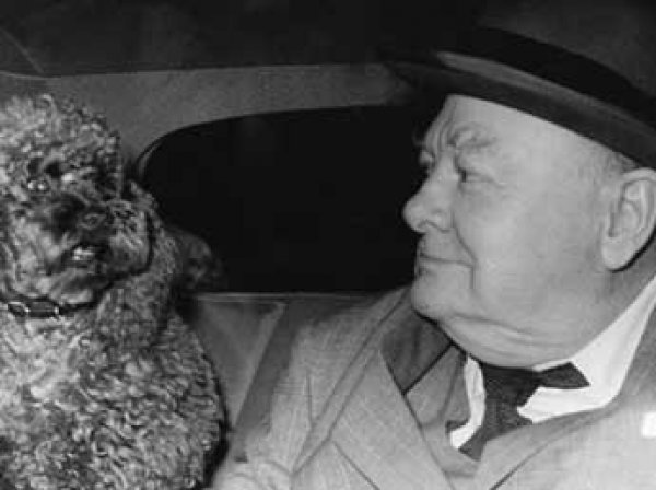 Историки нашли неизвестную статью Уинстона Черчилля о внеземной жизни