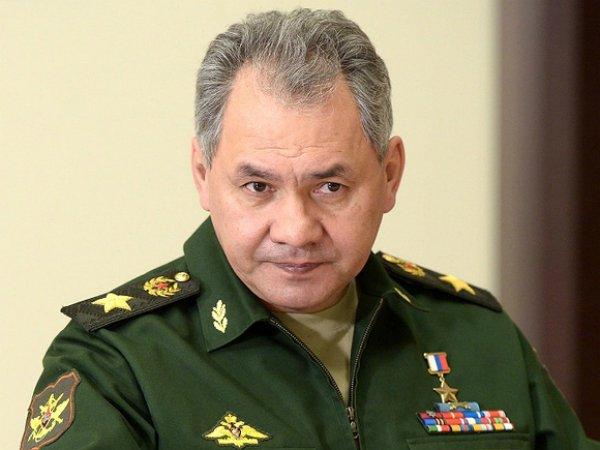 Шойгу: специальное радиолокационное поле защитит Россию от ядерного удара
