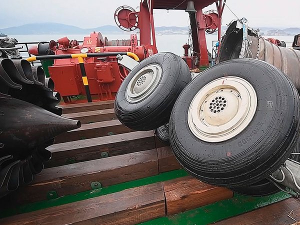 Причины крушения самолета ТУ-154 в Сочи озвучили специалисты - все дело в педали (ВИДЕО)