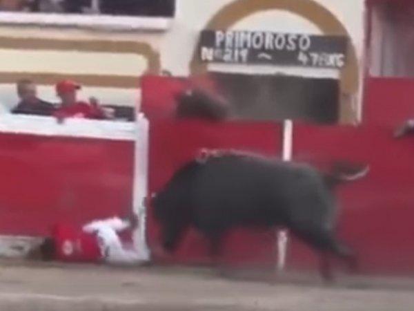 YouTube ВИДЕО: в Мексике быки напали на зрителей во время корриды