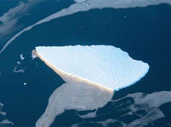 От ледника в Антарктиде откололся огромный айсберг размером с Манхэттен (ВИДЕО)