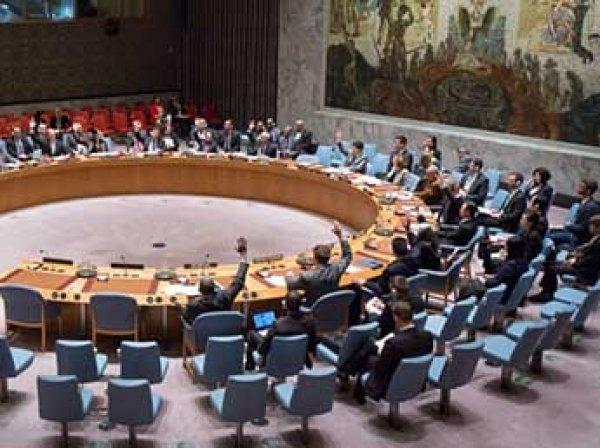 Украина заблокировала посвященное Чуркину заявление Совбеза ООН
