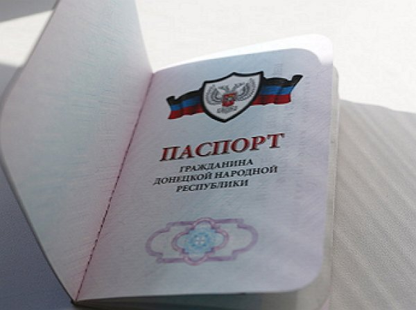 Россия официально признала паспорта и другие документы ДНР и ЛНР