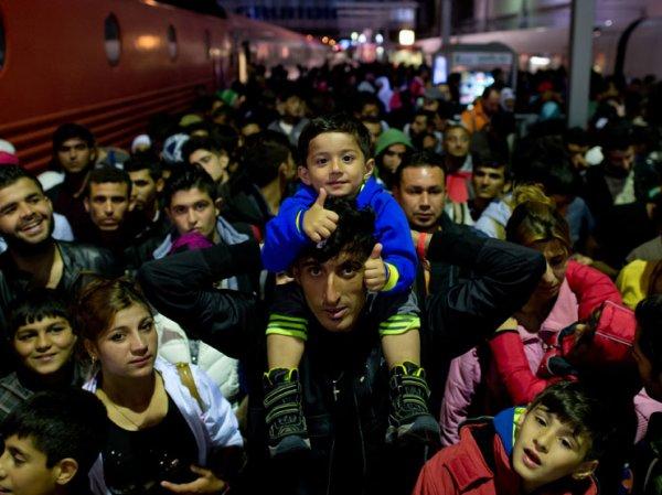 Германия заплатит беженцам за возвращение на родину