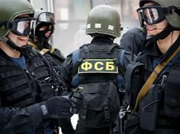 МВД и ФСБ ликвидировали международный наркосиндикат с центром в Киеве