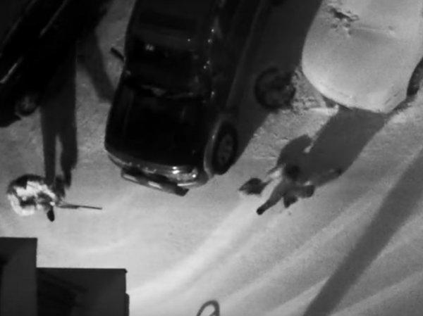 YouTube потрясло ВИДЕО циничного убийства женщины на парковке в Новосибирске