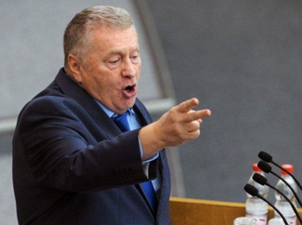 Жириновский: руководство Украины готовы целовать любые ноги