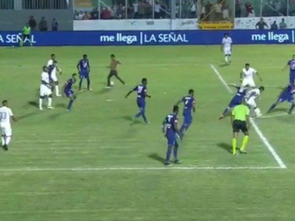 Арбитр заcчитал забитый болельщиком мяч в чемпионате Гондураса (ВИДЕО)