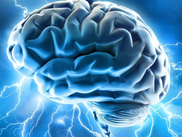 Ученые рассказали об уникальном случае жизни мозга  человека после смерти