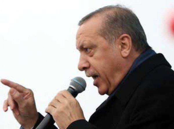 """""""Снова Путин виноват"""": Forbes пишет, что Эрдоган устроил переполох в Голландии по заданию РФ"""