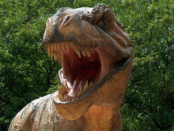 Ученые нашли самый большой след динозавра (ФОТО)