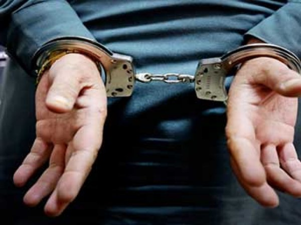 Суд отправил под домашний арест замдиректора Эрмитажа и главу департамента Минкульта Новикова