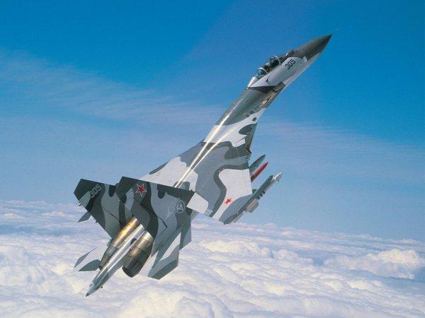 СМИ: российский Су-27 пролетел в шести метрах от самолета ВВС США