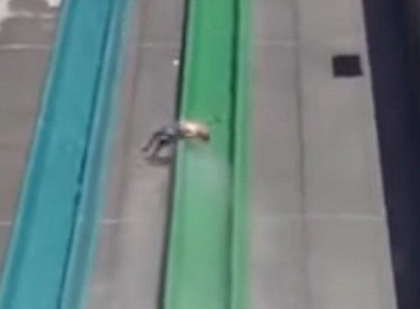 YouTube ВИДЕО: в США ребенок вылетел с горки в аквапарке