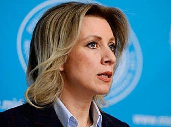 """Запад """"ловит покемонов"""": Захарову насмешил отказ финского журналиста ехать в Чечню"""