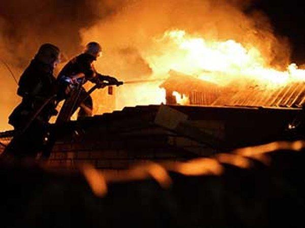При пожаре на заводе плитки в Ленобласти заживо сгорели семь человек(ФОТО)