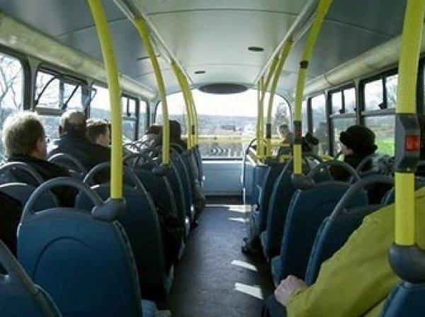 Минтранс решил вернуть лицензии на перевозки автобусами больше восьми человек