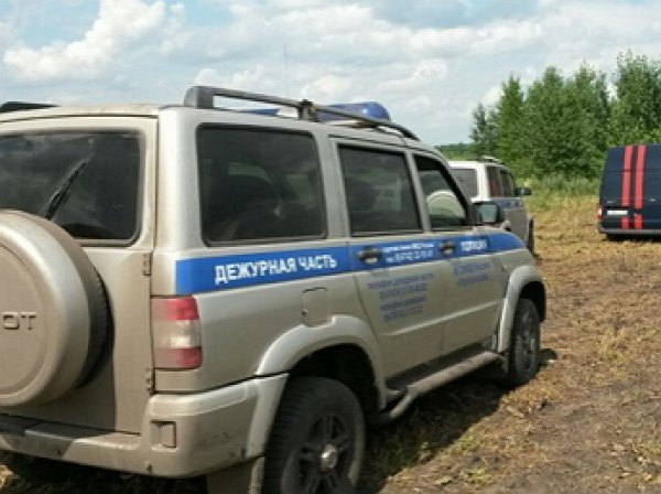Пропавшего под Воронежем 3-летнего Артема Кузнецова нашли мертвым