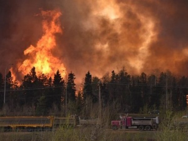 Пожар в Ростове-на-Дону сейчас 21.08.2017: огонь добрался до жилых домов (ВИДЕО)