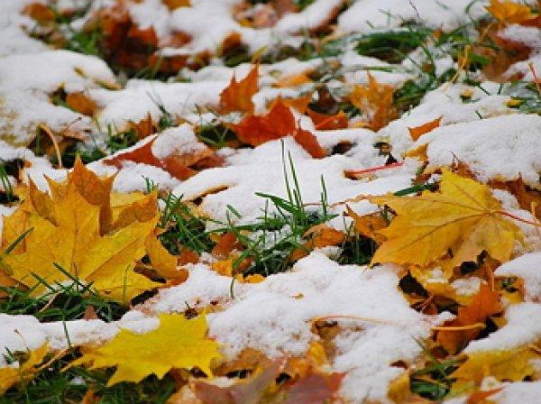 На выходные Гидрометцентр обещает первый снег