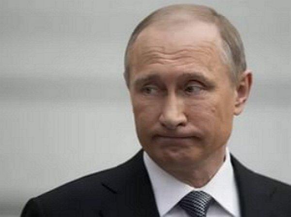 «Да, жалко»: Путину в Ярославле не дали попробовать козье молоко