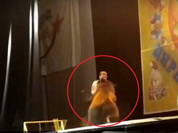 YouTube шокирован ВИДЕО, как медведь едва не растерзал дрессировщика в Сыктывкаре