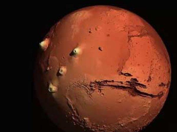 """Уфологи разглядели на Марсе """"голову дракона"""""""