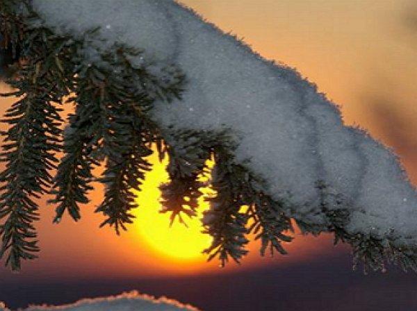 Гидрометцентр рассказал, какая зима ожидает россиян