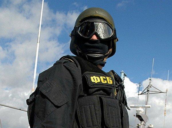 ФСБ вычислила, кто «заминировал» сотни зданий в России