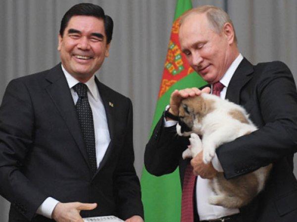 Туркменский президент подарил Путину щенка алабая